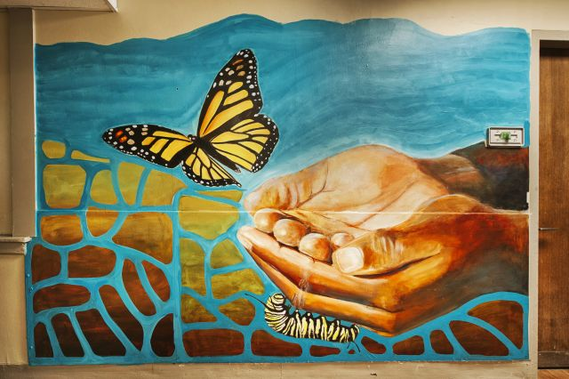 Untitled (hands releasing a monarch butterfly)