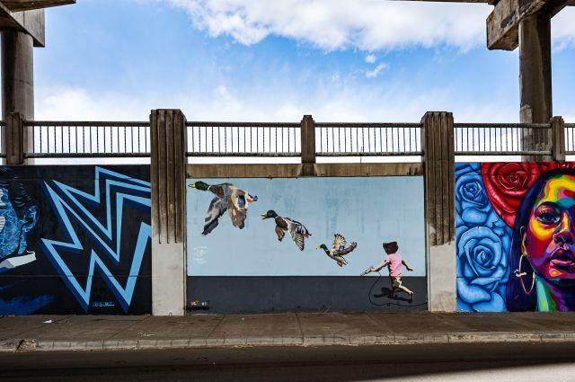 Untitled (child runs towards ducks in flight)