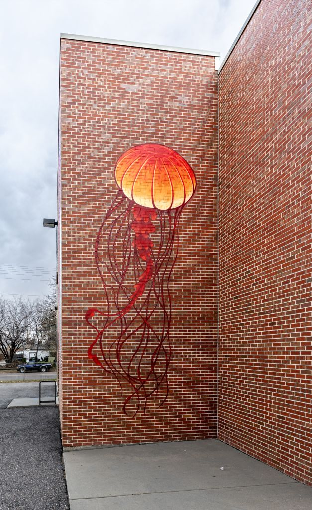 Go to the Untitled (several different colored jellyfish) page