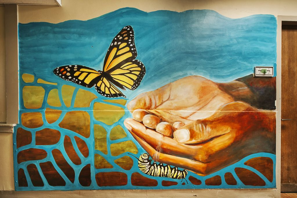 Go to the Untitled (hands releasing a monarch butterfly) page
