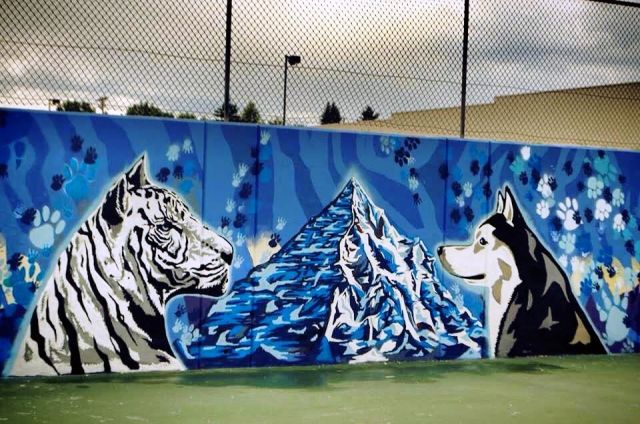 Untitled (white tiger and wolf viewing each other)